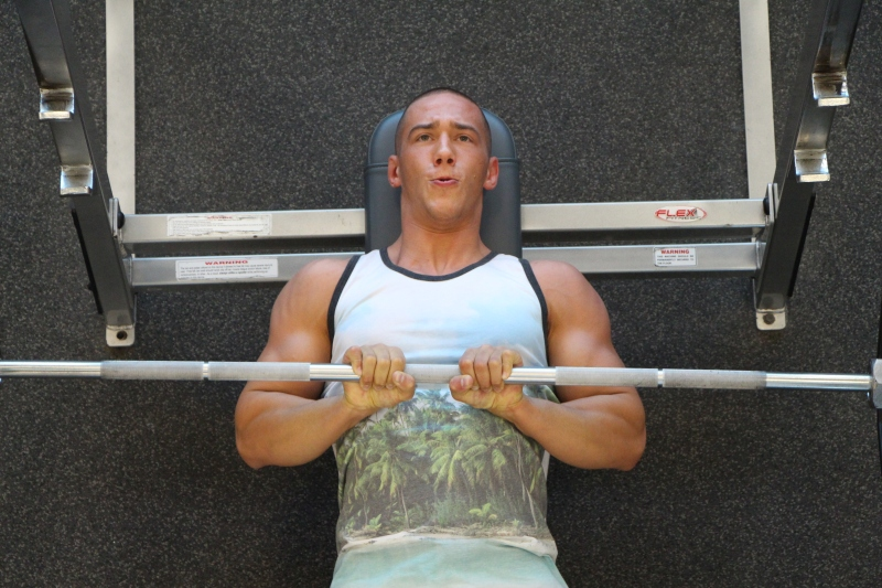 bench press work out plans