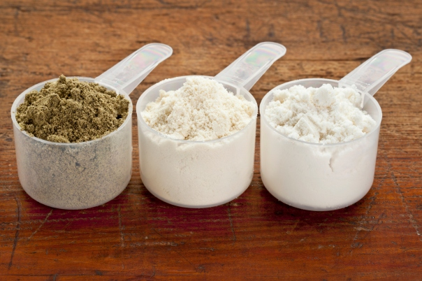 what is the ideal protein powder for you